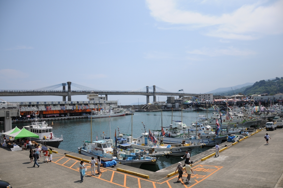 Abundant Odawara fishing port of fish class