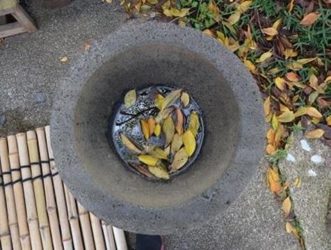 石壺の中の秋の風情(写真13)