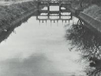 酒匂堰にかけられた水門