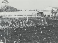 諏訪原の市営園芸センター