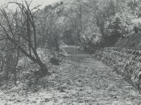 開通した石橋林道