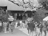 二宮神社の初詣風景