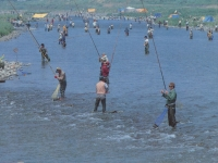 小田原での釣り