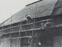 わら屋根のふき替え作業