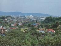荻窪の高台から国府津方面を望む