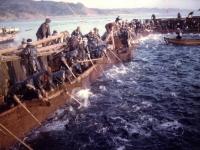 小田原沿岸の鰤漁