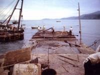 小田原漁港工事の過程