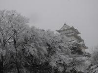 小田原城雪景色