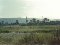 酒匂川と日本新薬小田原工場