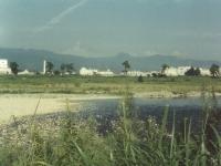桑原からの酒匂川