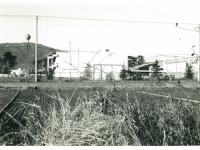 日本新薬小田原工場