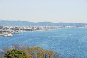 潮騒の駅根府川・江之浦漁港コース