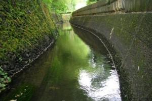 荻窪用水散策コース