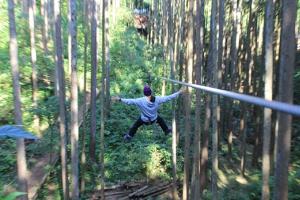 「きまつり~森と木に包まれる夏~」