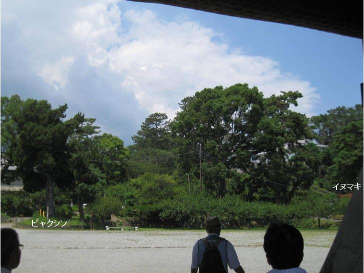 二の丸 銅門広場(修景前)