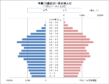 平成22年国勢調査の人口ピラミッド
