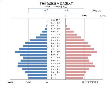 平成7年国勢調査の人口ピラミッド
