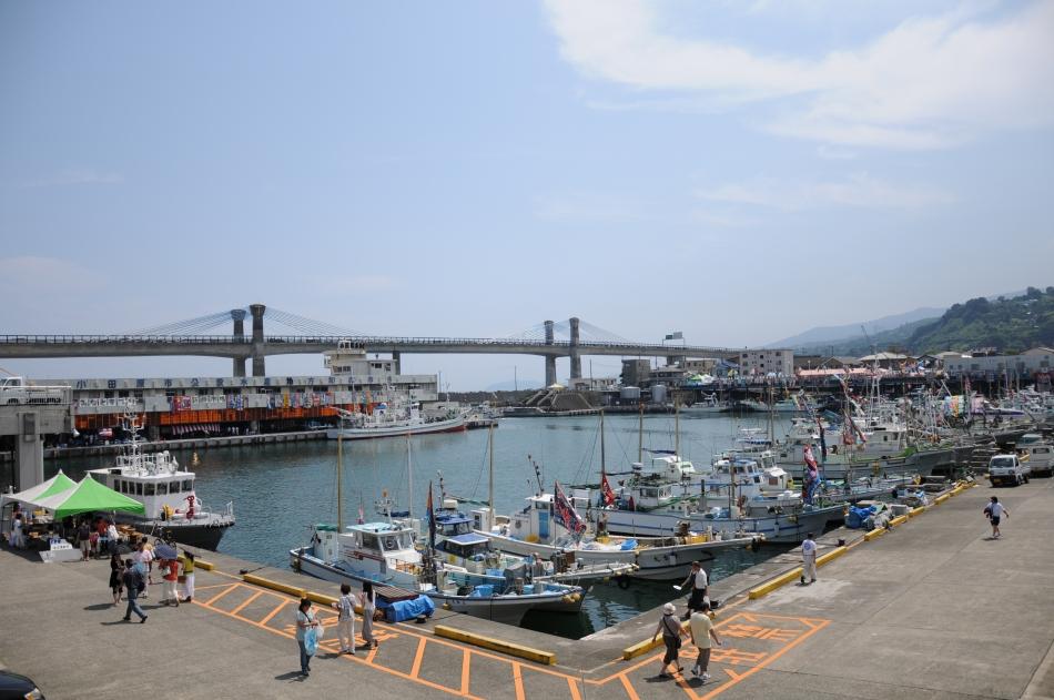 魚種の豊富な小田原漁港