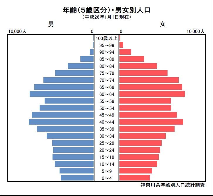 人口ピラミッド(平成26年)