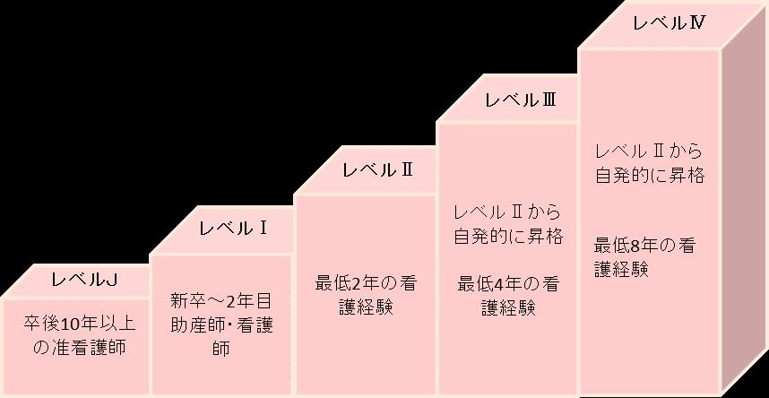 クリニカルラダー