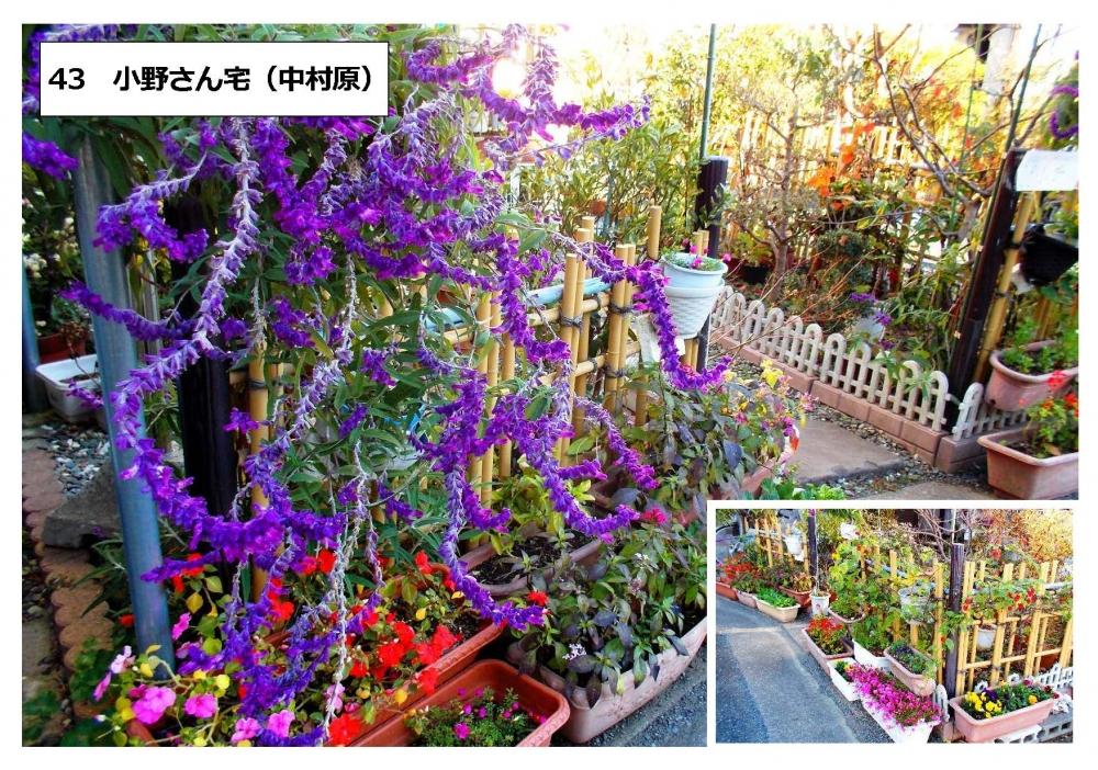 43小野さん宅(中村原)