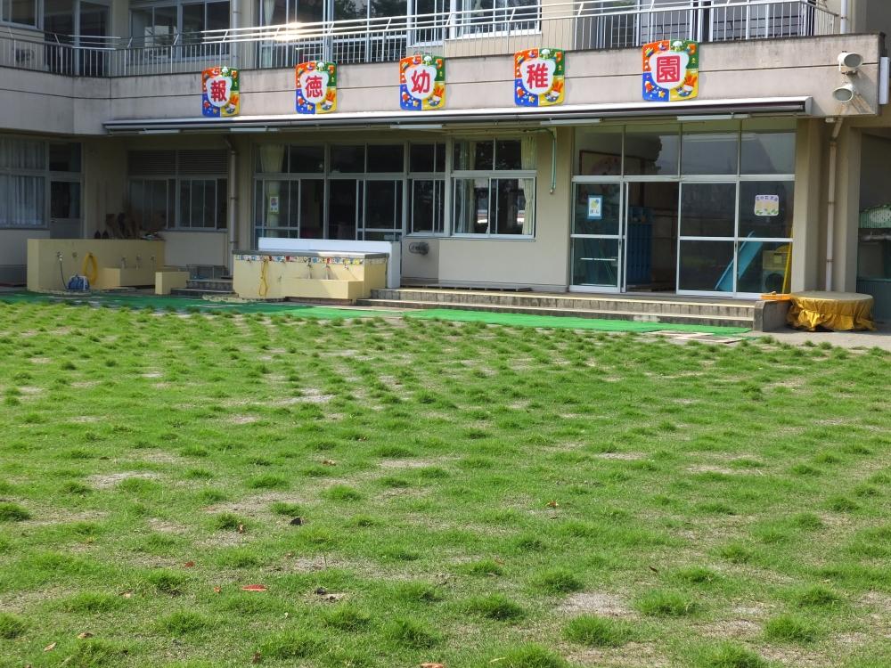 平成27年8月3日(月)の芝生の様子