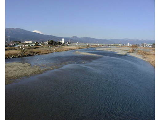 冬の酒匂川