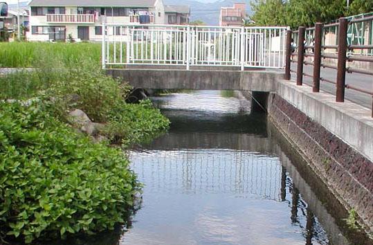 寺下排水路写真