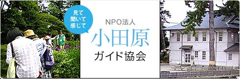 NPO法人 小田原ガイド協会