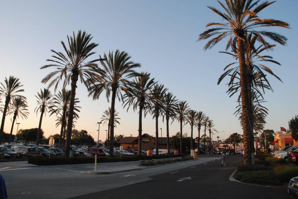 Chula Vista「美しい眺め」