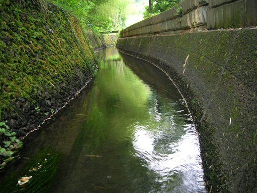 荻窪用水 山縣水道水源池付近の開渠