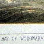小田原湾(BAY OF WODOWARA)の下(部分)