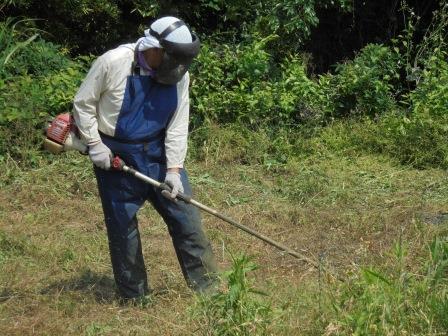 草刈のようす