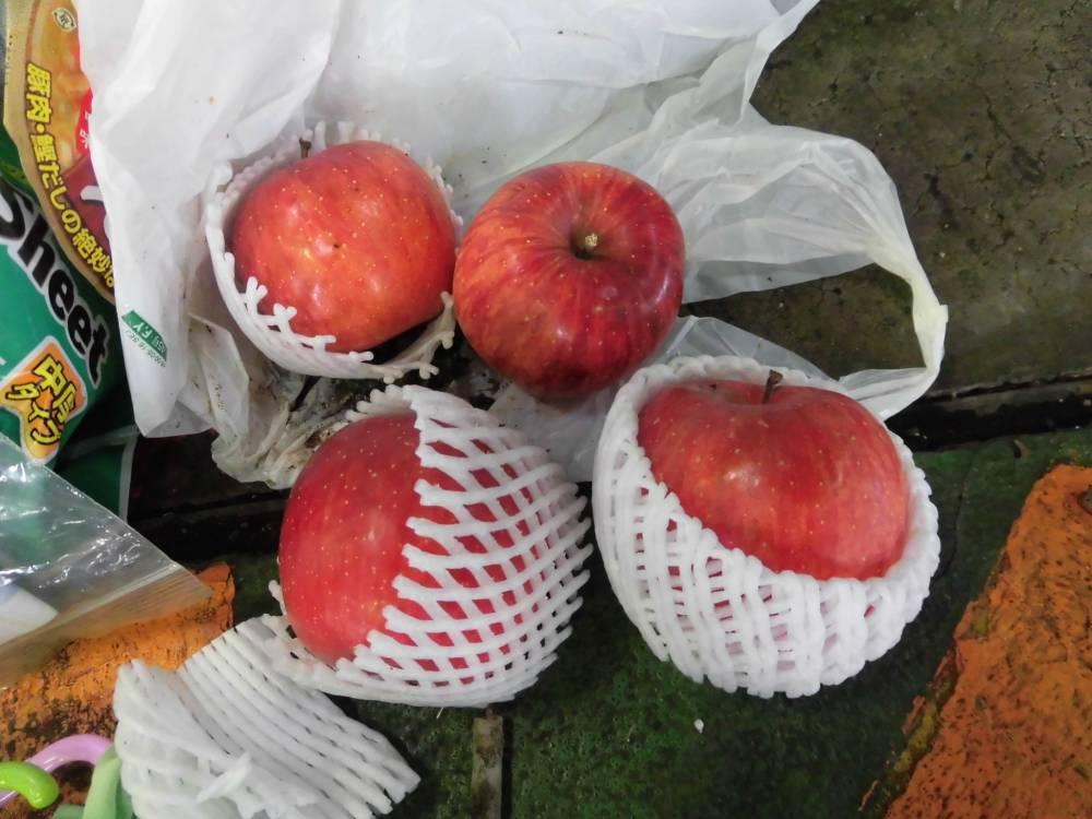 燃せるごみの中から出てきた食品ロス(りんご)