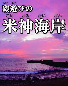 磯遊びの米神海岸