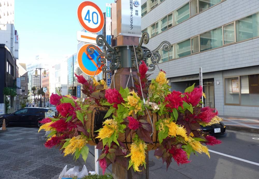 設置された花かざり