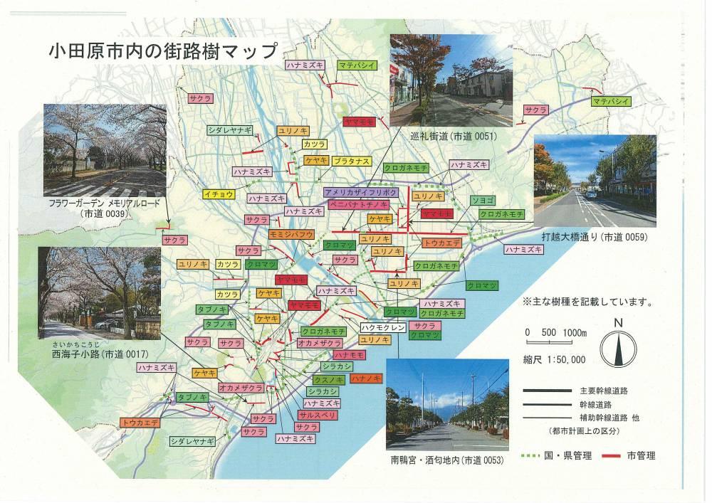 街路樹マップ