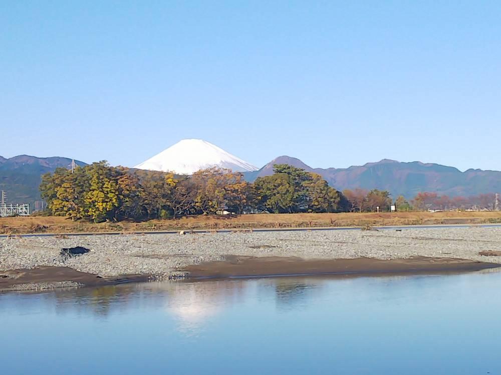 (酒匂川)漁協前の朝の風景