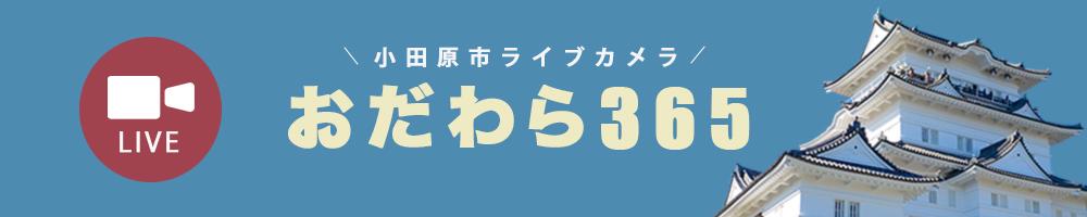 小田原市ライブカメラ