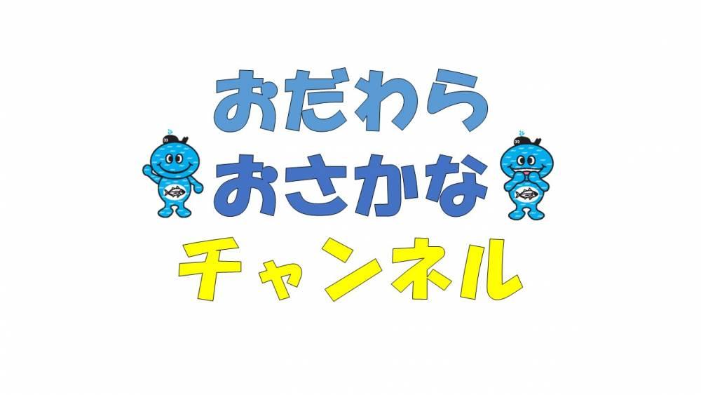 「おだわらおさかなチャンネル」youtube上のチャンネル