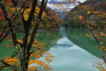 『錦秋の湖畔』〔撮影地〕西丹沢(山北町)〔撮影者〕下川 勝利