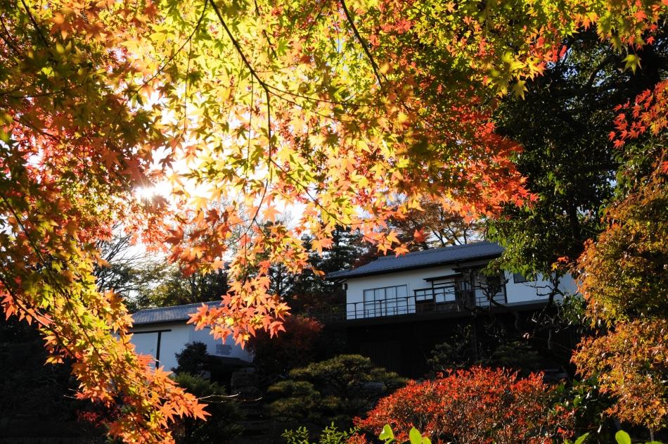 松永記念館紅葉
