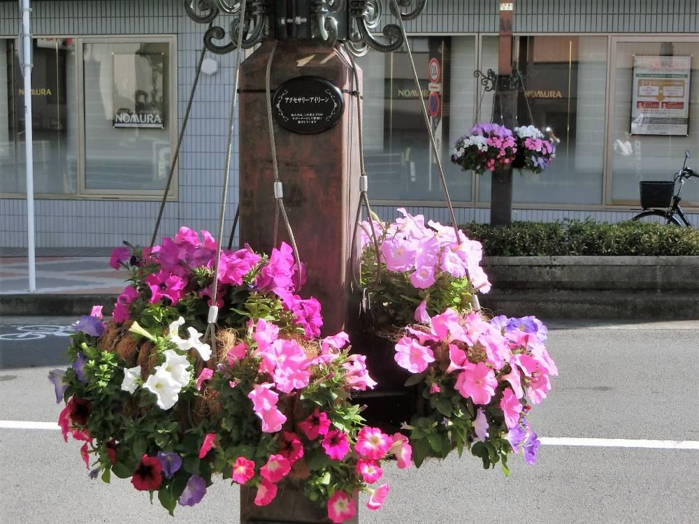 花かざり(幸田口通り)