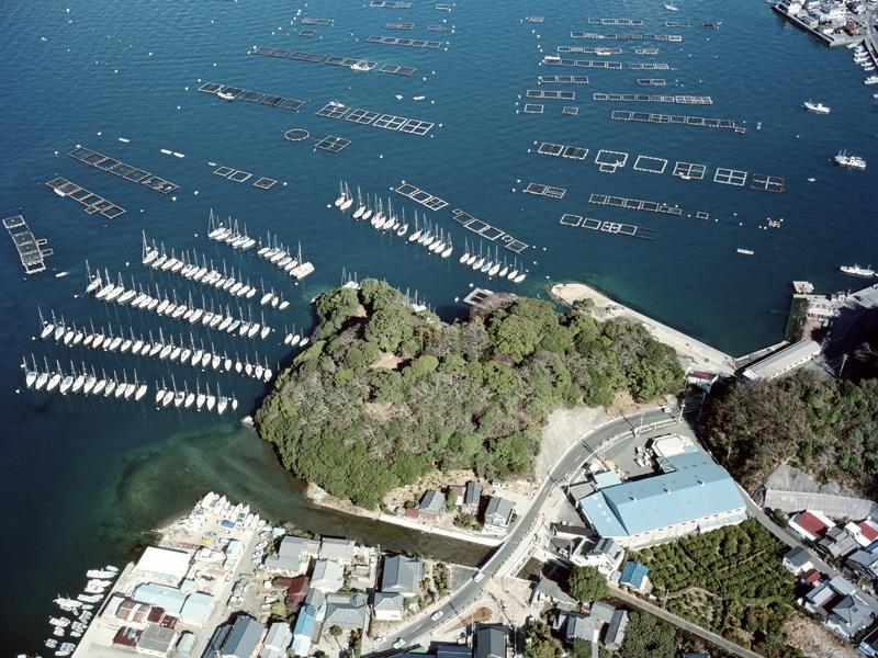 長浜城の普請と駿河湾海戦