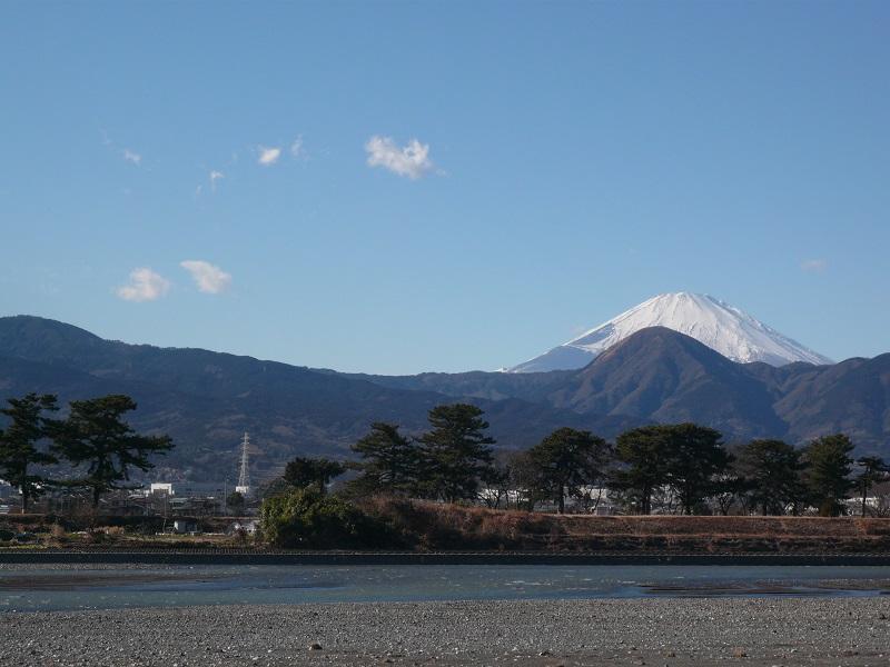 酒匂川と富士山と松並木