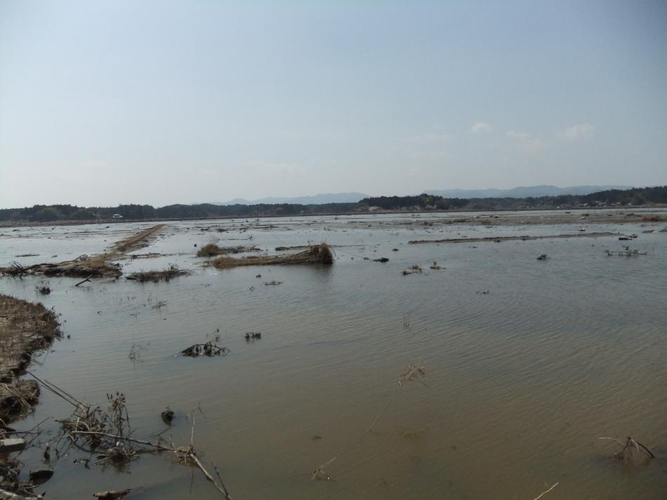 蒲庭地区 水没した田園