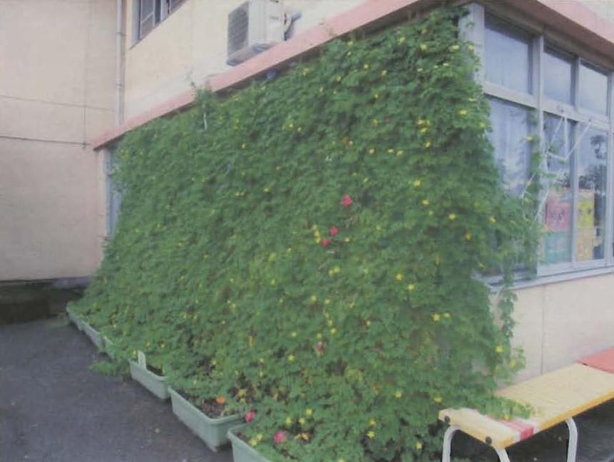 矢作幼稚園屋外