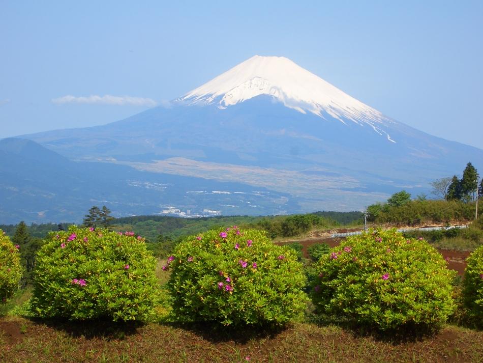 富士山と駿河湾の眺望