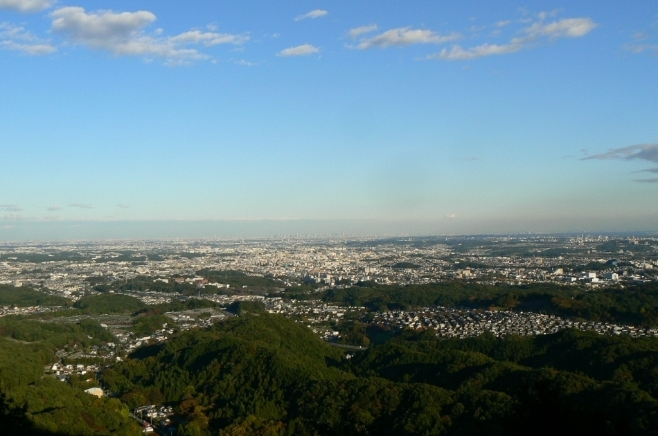城跡から都心部の眺望