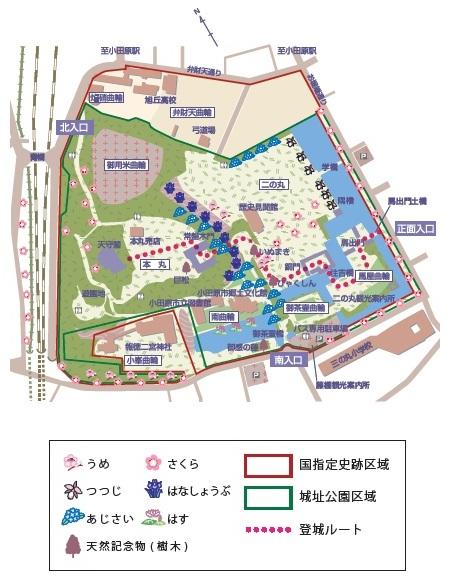 小田原城址公園内地図